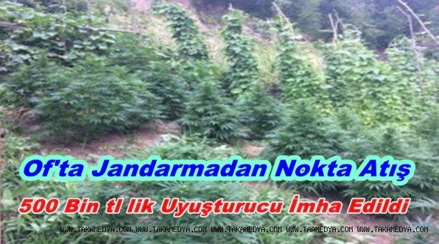 Trabzon Jandarma'dan Altın Vuruş
