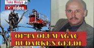 Of'ta Mustafa Nalçı Ağaç Budarken Hayatını Kaybetti